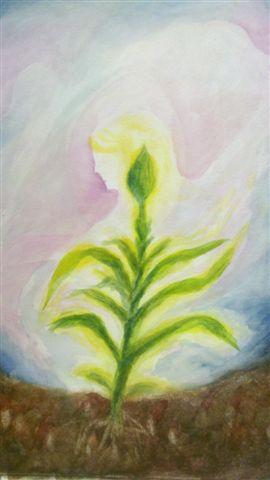 מטמורפוזה של פרח 4