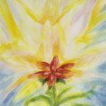 מטמורפוזה של פרח 6