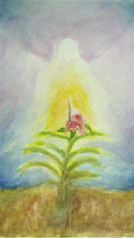מטמורפוזה של פרח 5