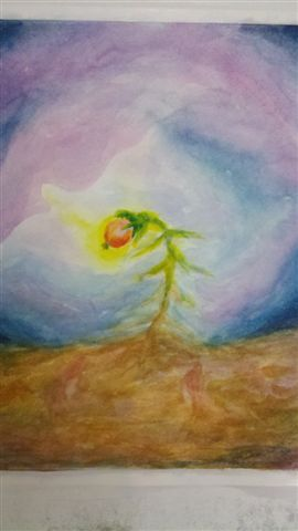 מטמורפוזה של פרח 7